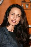 Andie Macdowell Stock Photo