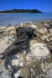 Andilana beach , madagascar lagoon Stock Images