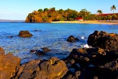 Andilana beach      seaweed in indian ocean madagascar mountain   san Royalty Free Stock Photography