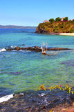 Andilana beach seaweed in indian ocean madagascar Royalty Free Stock Photo