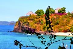 Andilana beach seaweed in indian ocean madagascar mountain Royalty Free Stock Image
