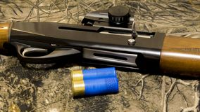 Andjakt i vår rundor 12-gauge och en camohagelgevär hagelgevär för 12 mått med kulor fotografering för bildbyråer