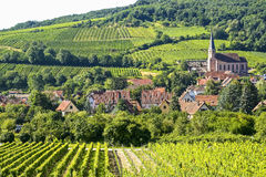 Andlau (Alsace) - Vineyards Stock Photography