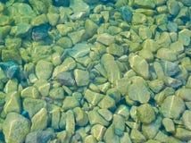 Andmat in - mellan stenar på vattnet kanta arkivbild