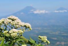 Andong góra Zdjęcie Royalty Free