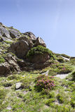 Andorra. Beautiful mountain landscape in the Pyrenees, Andorra Stock Photography
