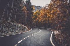 Andorra skogvägar royaltyfria foton