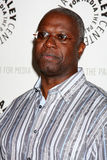 Andre Braugher Royalty Free Stock Image