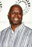 Andre Braugher Royalty Free Stock Photo