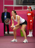 Andrea Petkovic - Fed Cup 2010. German tennis player Andrea Petkovic expect a ball in a match against czech player Lucie Hradecka 7 Feb, 2010, in Brno, Czech Stock Image