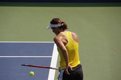 Andrea Petkovic Stock Images