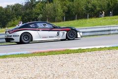 Andreas Segler nell'azione alla FIA WTCC il Trofeo immagine stock libera da diritti