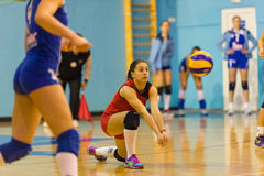 Andreea Ispas,排球使用在CSM布加勒斯特- CSM Lugoj符合的新书籍 免版税库存图片