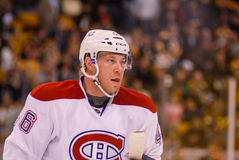 Andrei Kostitsyn Montreal Canadiens Stock Photography