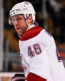 Andrei Kostitsyn Montreal Canadiens Royalty Free Stock Photos