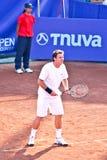 Andrei Pavel, Rumuński gracz w tenisa fotografia royalty free