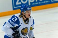 Andrei Spiridonov Stock Fotografie