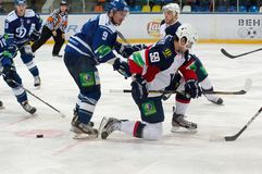 Andrej Stastny (59) on knees Stock Photography