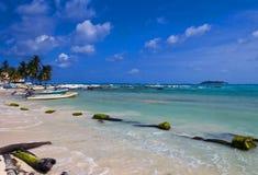 andres哥伦比亚海岛圣 免版税库存照片