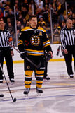 Andrew Ference Boston Bruins Royalty Free Stock Photography