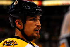 Andrew Ference Boston Bruins Royalty Free Stock Image