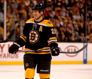 Andrew Ference Boston Bruins Royalty Free Stock Photo