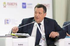 Andrey Makarov Royalty Free Stock Photo