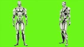 Androïde de robot gaat akkoord Realistisch voorzag motie op groene het schermachtergrond van een lus 4K stock illustratie