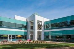 Android byggnad på den Google universitetsområdet Royaltyfri Fotografi