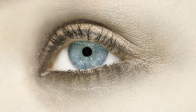 Android eyes. A closeup of an eye with a circuit board in the iris Royalty Free Stock Photo