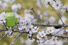 Android figurine on almond tree. ESTOI, PORTUGAL - FEBRUARY 4, 2018 - Android figurine on top of branch of a  almond tree on the countryside, located on the Royalty Free Stock Images