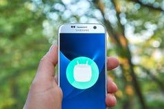Android marshmallowlogo Arkivfoto