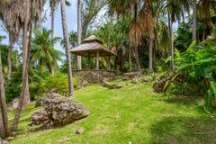 Andromeda Botanic Gardens, Barbados, das caraíbas Fotografia de Stock