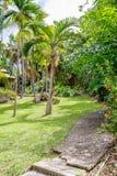 Andromeda Botanic Gardens, Barbados, das caraíbas Imagem de Stock