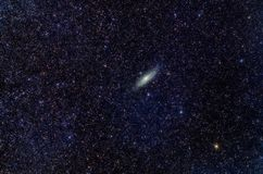 Andromeda Nebula Royalty Free Stock Photo