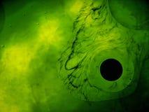 'andromedy galaktyka' Obraz Stock