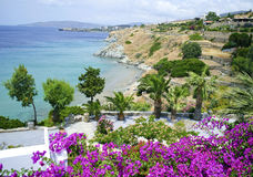Andros landscape Greece Royalty Free Stock Images