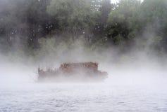 Andrullgardin i dimman på ett litet damm Arkivfoton