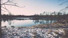 andscape με τις παγωμένες εγκαταστάσεις και τον τρύγο hoar-παγετού effe Στοκ εικόνες με δικαίωμα ελεύθερης χρήσης