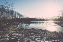 andscape με τις παγωμένες εγκαταστάσεις και τον τρύγο hoar-παγετού effe Στοκ Φωτογραφίες