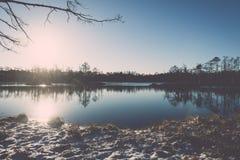 andscape με τις παγωμένες εγκαταστάσεις και τον τρύγο hoar-παγετού effe Στοκ Εικόνες