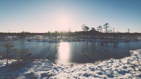 andscape με τις παγωμένες εγκαταστάσεις και τον τρύγο hoar-παγετού effe Στοκ εικόνα με δικαίωμα ελεύθερης χρήσης