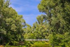 Andscape με τον ξύλινους ποταμό και τη γέφυρα Στοκ Φωτογραφίες