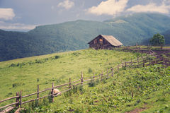 Andscape στα Καρπάθια βουνά Στοκ φωτογραφία με δικαίωμα ελεύθερης χρήσης