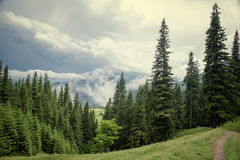 Andscape στα Καρπάθια βουνά Στοκ Εικόνες