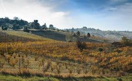 Andscape των λόφων του Oltrepo Pavese Στοκ Εικόνες