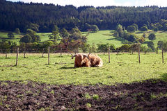 Andscapes και χωριά των ορεινών περιοχών, Σκωτία Στοκ Εικόνα