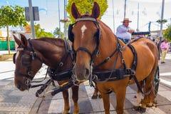 ANDUJAR, ESPANHA - setembro, 6: Participantes na feira do ho foto de stock royalty free