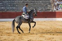 Andy Καρχηδόνα, ταυρομάχος στην πλάτη αλόγου ισπανικά Στοκ Εικόνες