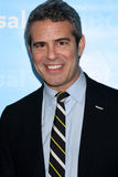 Andy Cohen Royalty Free Stock Photo